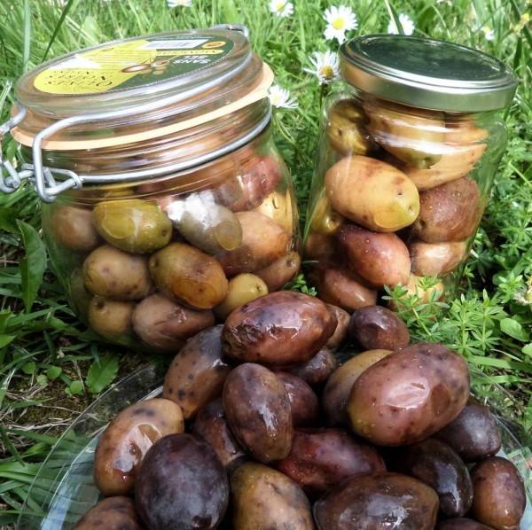 Jumbo Oliven ohne Salz Roh