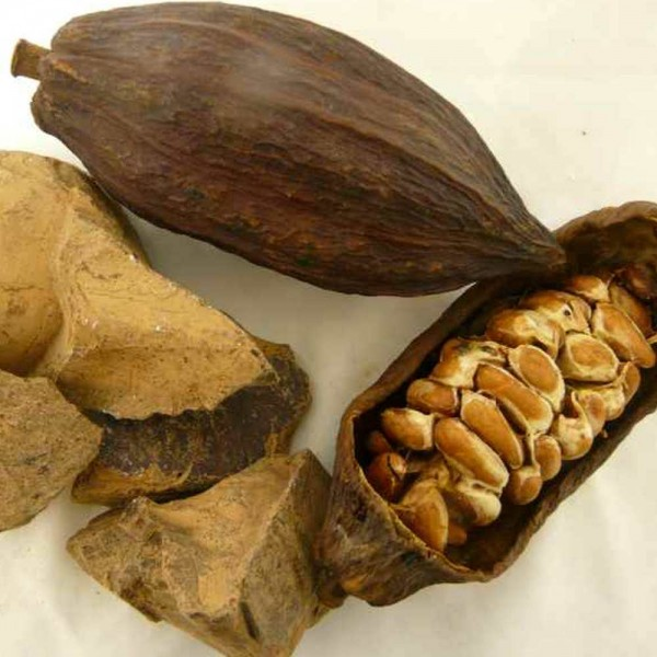 Kakaomasse / Kouvertüre 200g, Roh Bio